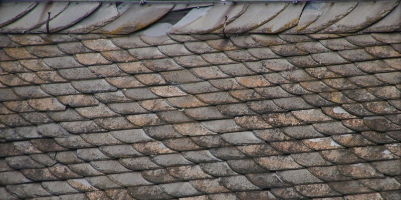 The Top 19 Causes of Roof Leaks