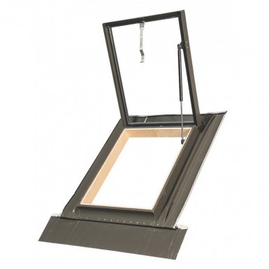 Access Roof Light Window WLI